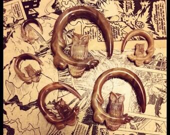 Vintage Owl Plug | Moon Taper Cute Gauge Tree Tunnel Bird Plug Wing Plugs | 8g (3mm), 6g (4mm), 4g (5mm), 2g (6mm), 0g (8mm), 00g (10mm)
