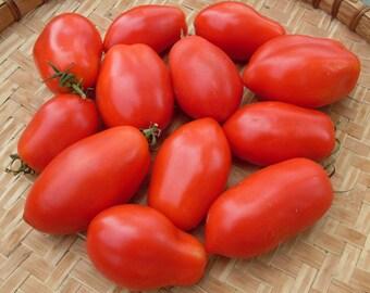 Tomatoes, 54, roma v.f. pomodoro seeds, gardening, greek tomato seeds,tomato sause, sweet tonatoes