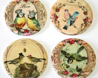 Whimsical Love Birds - Set of 4 Large Fridge Magnets
