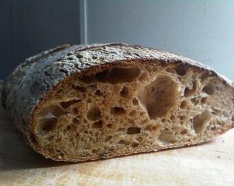 Fresh San Francisco Wild Yeast Sourdough Starter