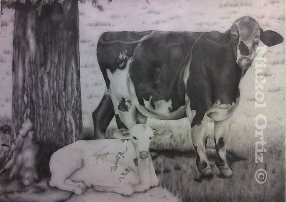 Cow Pencil Sketches Cow And Calf Pencil Drawing
