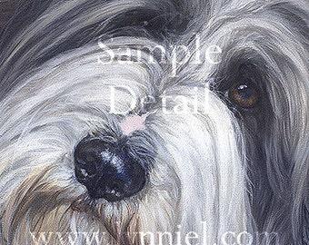 BEARDED COLLIE fine art dog print 'Ella'