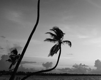Black and white sunrise, photo print