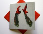 Fine Art Greeting Card - Wild Egos (Peacock)