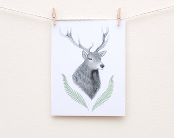 Stag and ferns eco-friendly art postcard