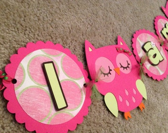 "Hot Pink and Lime green Owl Highchair Banner ""I am 1"""