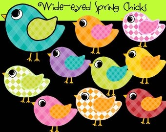 Wide-eyed Spring Chicks