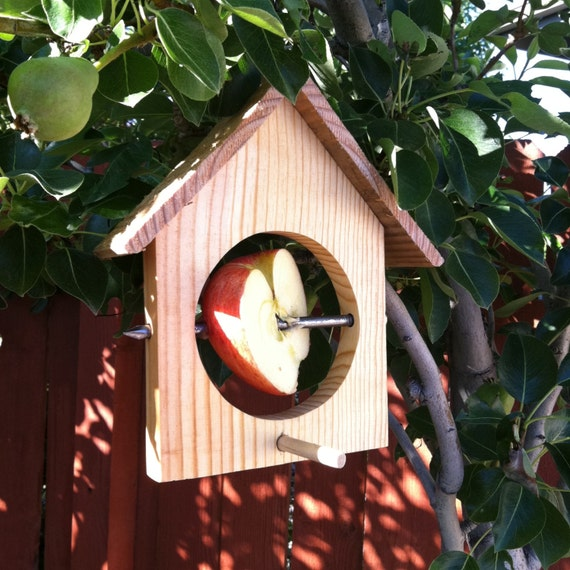 Bird House Style Bird Feeder