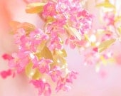 Blossom, Spring, Nature photography, Pink, Sunny, Wall Decor. - Fizzstudio