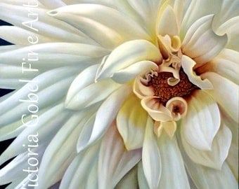 "White Dahlia Limited Print 36""x 36"" Giclee Gallery Wrapped on Boxed Canvas"