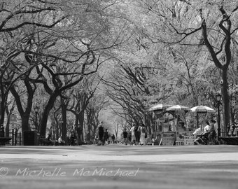 "Central Park, New York Photography, 5x7 Fine Art Print, black and white, Literary walk, ""Out for a Stroll"", home decor"