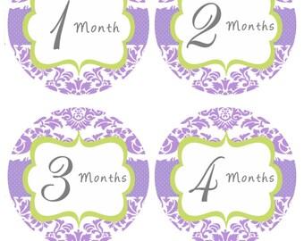 Baby Girl Milestone Stickers Monthly Bodysuit Stickers Purple Green Damask Monthly Girl Stickers Baby Shower Gift Photo Prop Nessa1-R