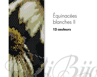 Équinacées blanches II -  PATTERN