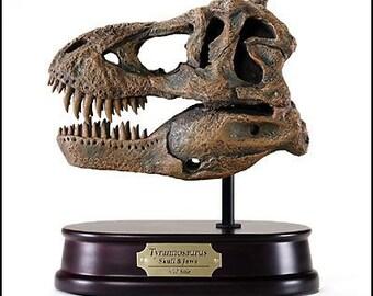 Tyrannosaurus Rex / T.rex (T-rex) Dinosaur Skull Model, 1:10 Scale