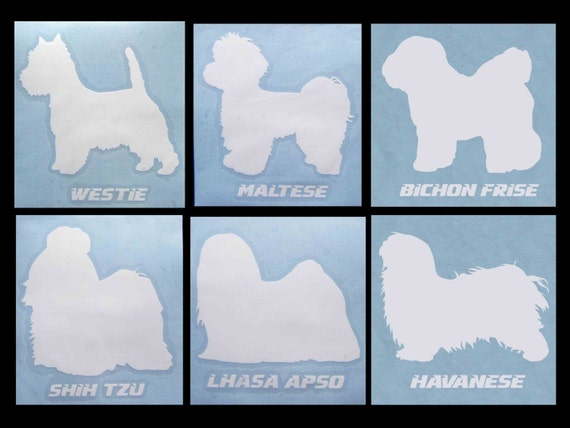 bichon frise vs maltese decal dog breeds westie maltese bichon frise shih tzu 2660
