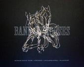 Silkscreen Poster---Band Of Horses, Mirage Rock Tour
