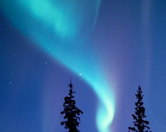 Fine Art Print, Aurora Borealis, Northern Lights, Kluane Lake, Yukon Territory, Canada, Alaska, Nature photograph
