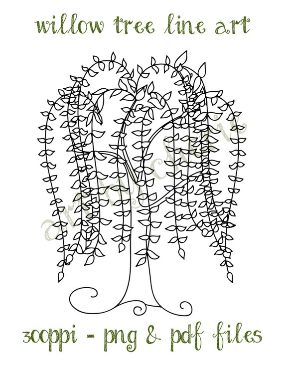 Coloring Page Willow Tree. Willow Tree Line Art  Clip PNG and PDF Files Graphics Digital Download File