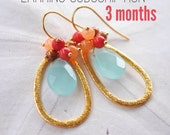 3 Month Earrings Subscription. February - April 2016 Lauren Amos Designs. Special Offer.