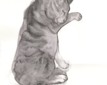 Original  Watercolor Painting - Gray Tabby