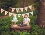 Happy Birthday Flags, Bunting, Banner, Party Garland. Boy Themed, One of a Kind, Made to Order.