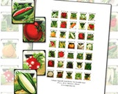 Antique Vegetable and Herbs scrabble sized digital collage sheet .75 x .83 in 19mm x 21mm seed packets pumpkin tomato