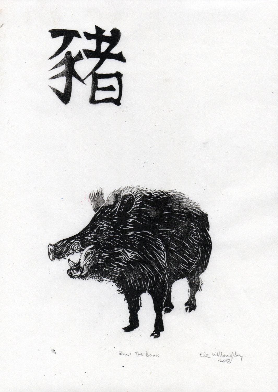 Risultati immagini per zodiaco cinese cinghiale