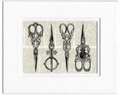 Scissors, vintage scissors print