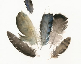 Found Feathers No. 4- print of watercolor