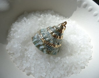 Gold Trimmed Green Cone Top Shell Pendant