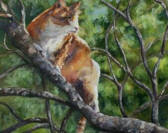 Original Watercolor and Acrylic Painting Cat in Tree Yellow Tabby  Sarah Davis