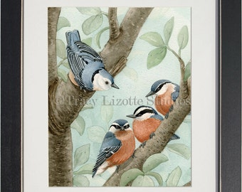 Bird Tree with Nuthatches - archival watercolor print by Tracy Lizotte