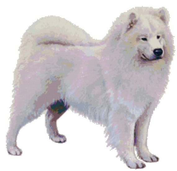 Samoyed Dog Counted Cross Stitch Pattern From