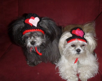 MY SWEET VALENTINE - Hearts hat -Dog or Cat - Choose colors - Humorous - 2 to 20 lb pets-made to order