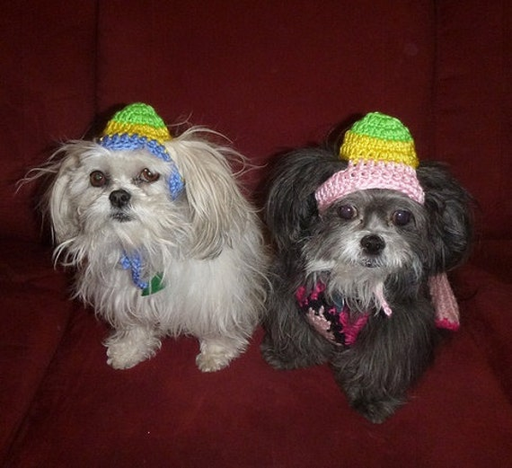 EASTER EGG-HEAD Dog hat - Humorous - 2 to 20 lb pets - need measurement