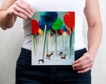 Lollipop Forest - 8x10 Metallic Print