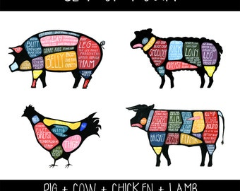 Set of Four Meat Butchery Diagrams - Pig, Cow, Lamb, Chicken