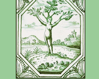 The Haunted Garden: Death and Transfiguration in the Folklore of Plants small paperback book of botanical myth and legend - Free US shipping