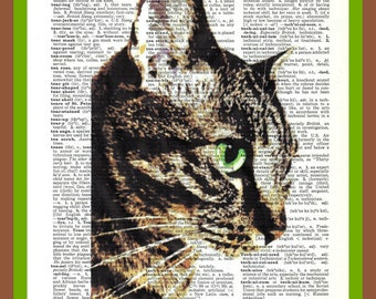 Buy Any 2 Prints Get 1 Free  Your pet Family Pet on a dictionary page