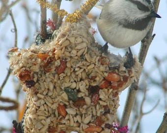 Bird Seed Feeder 1/4 lb. Star Shape ornament cake wreath