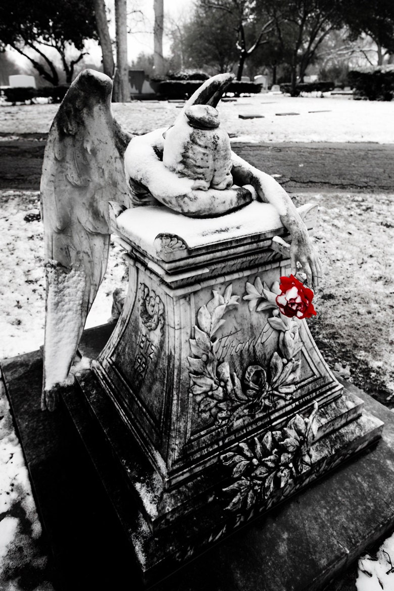 Weeping angel cemetery in snow red flower black and white fine art photography 8 x 12 print gothic angel