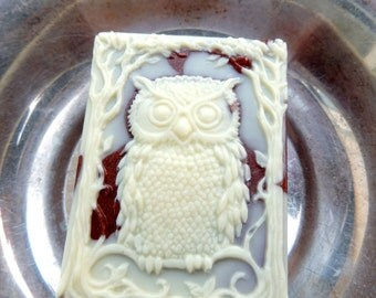 OWL SOAP, Bird Soap, What a Hoot - Copper and Cream, Scented in Fig & Pears, Bird Soap, Animal Soap, Novelty Soap, Vegetable Based Handmade
