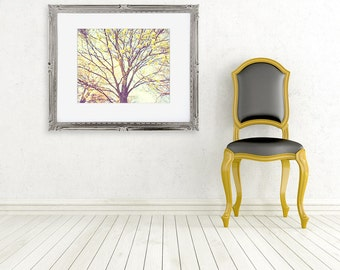 tree photograph autumn color photo nature photography golden light spring blossoms fine art wall decor