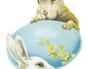 1 1/2 Fabric Button Spring Rabbits Bunny Blue Egg Yellow Dainty Floral Woodland White Fresh Fashion Trend