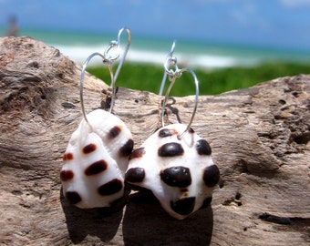 Hawaiian Large Back Spotted Drupe Shell Pieces on 925 Sterling Silver Circular Wire Small Hoop Earrings
