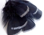 SILVER DIPPED black feathers, metallic silver tip hand painted real turkey feathers loose small / 3-5 in (7.5-12.5 cm) long, 6 pcs / F115-3S