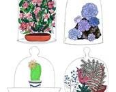 Items Similar To Bell Jar Terrarium Giclee Print Fine Art