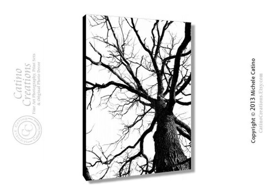 Canvas Tree Silhouette Bold Branches Large Scale Gallery Wrapped Canvas Nature Tree Black and White Photo Art on canvas Signed print