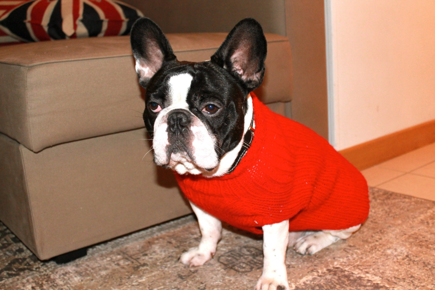 French Bulldog Red Knit Sweater for Dogs-Handmade /TRACKING