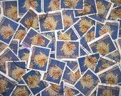 Australian Zebra Lionfish Stamps x 10